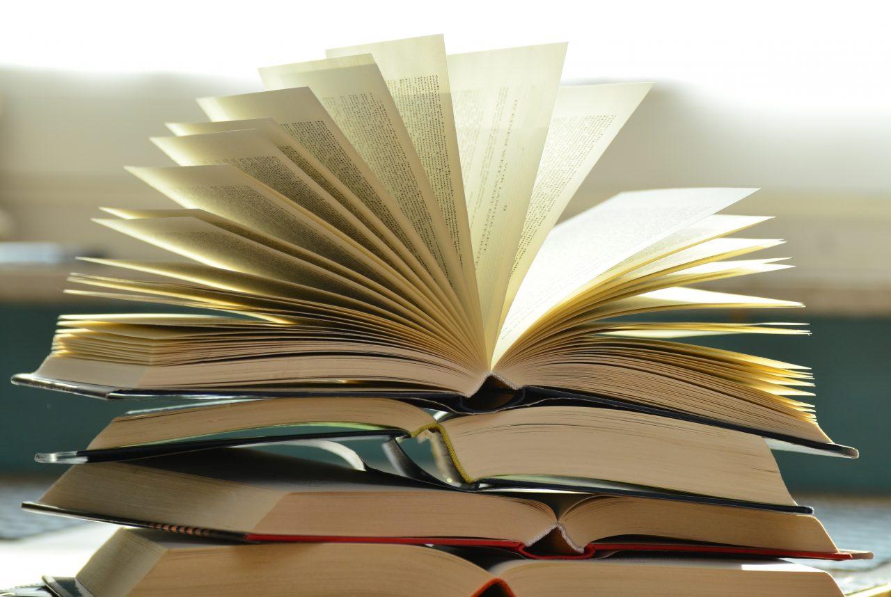 schule-lesende-schule